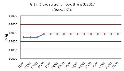 Báo cáo ngành hàng cao su tháng 3/2017