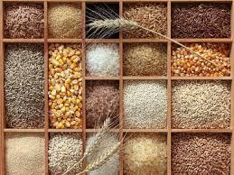 Sản lượng ngũ cốc thế giới năm 2021 dự báo đạt kỷ lục 800 triệu tấn