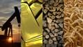 Hàng hóa TG tháng 6/2020: Giá dầu, vàng và kim loại tăng