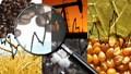 Hàng hóa TG sáng 13/12/2018: Giá vàng và cà phê tăng, dầu giảm