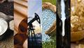 Hàng hóa TG sáng 4/12/2019: Giá dầu Mỹ, vàng và cà phê tăng