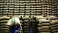 Xuất khẩu gạo Ấn Độ dự kiến cao kỷ lục