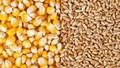 Giá nông sản và kim loại thế giới ngày 18/11/2019
