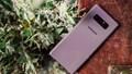 Top 5 smartphone màu sắc hiếm có khó tìm dành cho chị em diện Tết