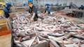 Quy định của BCT về mức tiêu hao năng lượng trong ngành công nghiệp chế biến thủy sản