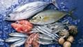 Việt Nam đẩy mạnh xuất khẩu hàng thủy sản và rau quả sang Campuchia trong T1/2020