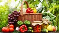 Xuất khẩu rau, hoa quả tươi vào thị trường EU