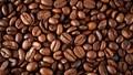 Giá cà phê trong nước ngày 24/7/2017