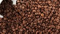 TT cà phê ngày 14/10: Giá đứng lại sau phiên sụt giảm cuối tuần