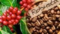 Thị trường cà phê nóng lên bởi sự cố tại Brazil và Việt Nam cùng dự đoán đà tăng giá chưa dừng lại