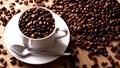 TT cà phê ngày 02/12: Giá hai sàn giao dịch thế giới toàn sắc đỏ