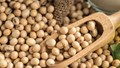 Các mặt hàng nông sản có thể tăng trở lại nhờ lực mua từ các mức hỗ trợ