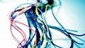 Xuất khẩu dây và cáp điện lọt vào TOP nhóm hàng kim ngạch tỷ USD