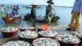 Thủy sản Việt tìm hướng chinh phục… 'sân nhà'