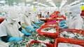Tiền Giang: Nhiều doanh nghiệp chế biến nông thủy sản áp dụng sản xuất sạch hơn