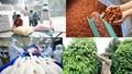 Tổng hợp bản tin thị trường Thái Lan
