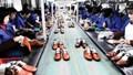 Hiệp định CPTPP và cam kết từ Canada dành cho Việt Nam đối với mặt hàng giày dép