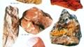 Xuất khẩu quặng, khoáng sản: lượng tăng mạnh, nhưng trị giá thấp
