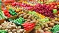 Rau quả xuất khẩu mang về gần 190 tỷ đồng/ngày