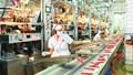 TP. Hồ Chí Minh: Các ngành công nghiệp trọng yếu tăng trưởng ổn định
