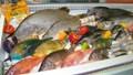 Xuất khẩu thủy sản sang hầu hết các thị trường đều tăng kim ngạch