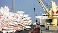 Xuất khẩu gạo 6 tháng đầu năm tăng cả về lượng và kim ngạch