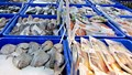 Các thị trường chủ yếu cung cấp thủy sản cho VN 8 tháng đầu năm