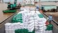 FTA- Đòn bẩy cho xuất khẩu gạo