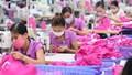 Vinatex: Trung Quốc có thể thành 'thị trường tiêu thụ lớn' của dệt may