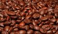 Giá cà phê trong nước dự báo sẽ tăng