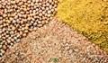 USDA: Tiến độ mùa vụ và tình hình giao hàng nông sản Mỹ