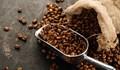 Giá cà phê ngày 25/9 tăng vọt thoát mức đáy