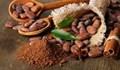 Giá cà phê arabica ngày 21/9 tiếp tục hồi phục do đồng real Brazil tăng giá