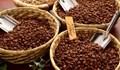 Giá cà phê tại Việt Nam cao nhất hơn 5 năm, tại Indonesia ổn định