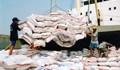 Thương lái và người bán bắt tay đấu trộn gạo
