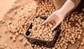 Giá ngũ cốc thế giới ngày 18/6: Giá đậu tương, lúa mì và ngô đều giảm