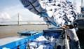 Philippines hạn chế nhập khẩu gạo trong năm 2021