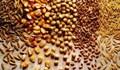 Macquarie: Thị trường nông sản tiếp tục dò đáy