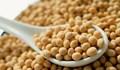 Thị trường NL TĂCN thế giới ngày 18/6: Giá đậu tương tăng