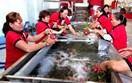 Làm gì để nông sản Việt có chỗ đứng ở thị trường Hàn Quốc?
