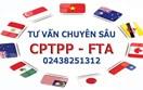 Tư vấn về CPTPP và các FTA Việt Nam đã tham gia ký kết