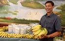 Tỷ trọng nhỏ nhưng giá trị xuất khẩu của chuối Việt vào EU đang tăng mạnh, ở mức rất cao