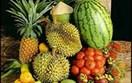 Thái Lan: Được mang tối đa 20kg trái cây tươi miễn phí trên các chuyến bay