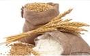 Ukraina sẵn sàng dừng xuất khẩu lúa mì nếu cần thiết