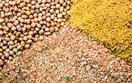 Báo cáo tháng 12 về cung - cầu ngũ cốc thế giới