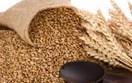 Báo cáo của USDA về sản lượng ngũ cốc thế giới