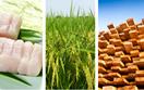 Nhiều ngành hàng xuất khẩu chủ lực của Việt Nam bắt đầu hưởng lợi từ EVFTA