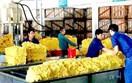 Giá cao su xuất khẩu tuần từ 10/4 đến 13/4