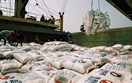Giá gạo xuất khẩu tuần từ 26/10 đến 1/11/2018