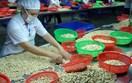 Xuất khẩu nông sản sang Anh: Sớm tận dụng cơ hội từ UKVFTA, mở rộng thị phần